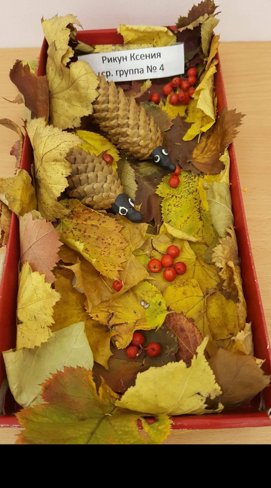Ежик с листьями поделка 50