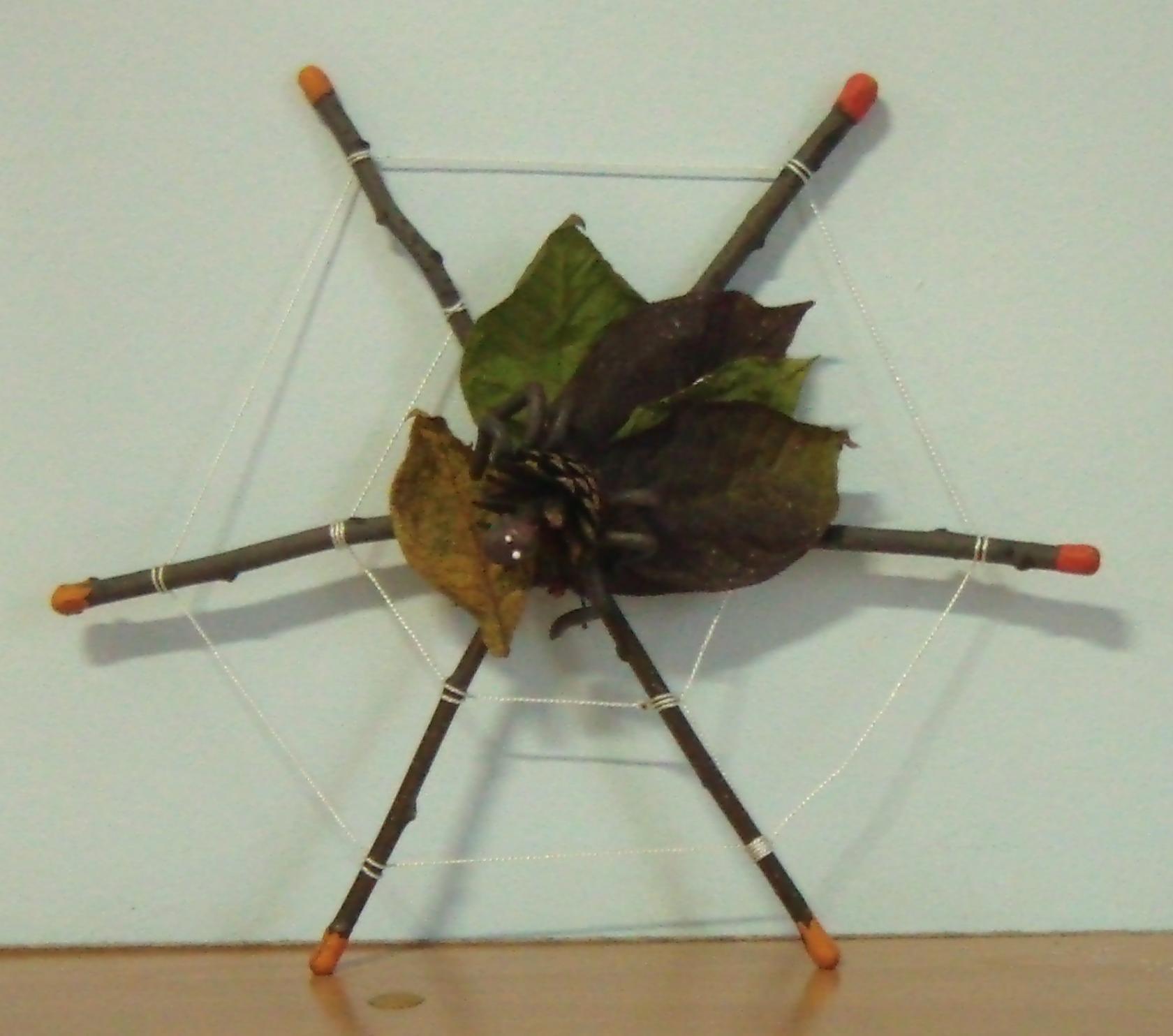 Паук из природного материала своими руками фото для